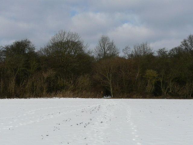 Pete's Walks - Kensworth-Redbourn in the snow