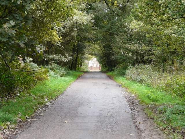 Pete S Walks Watlington Hill Turville Cadmore End